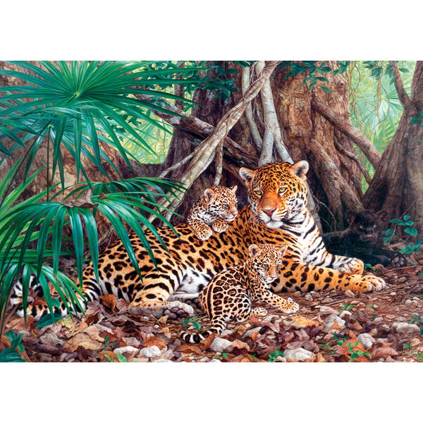 Jaguars in de jungle Puzzel 3000 Stuks