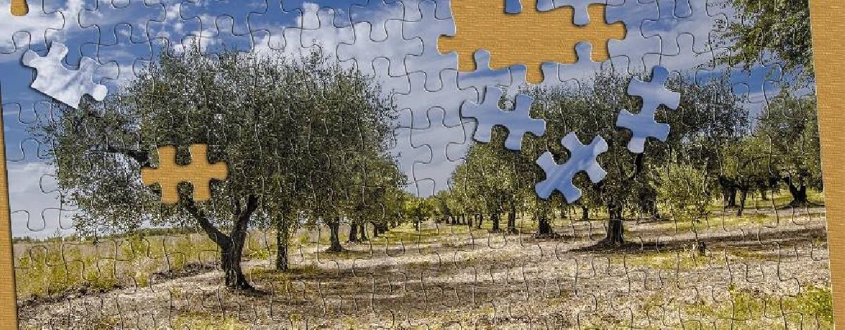 Puzzels van de natuur - alle puzzels bij 1001puzzles.nl
